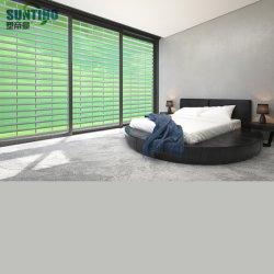 Roller Shutter Exterior Shutters Door海View部屋Balconyのための多彩、Strong