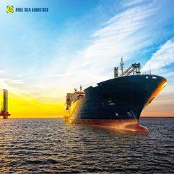 6Transporte agente de transporte profesional de China a Europa