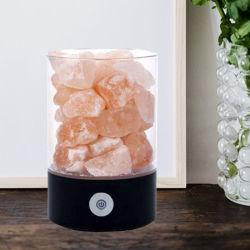 Lampada decorativa squisita del sale del USB naturale più popolare