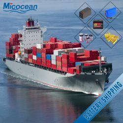 Batterie-Verschiffen-Agens von China nach weltweit
