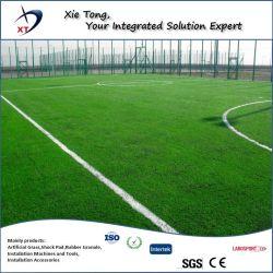 700-900 квадратных метров площади мини футбол искусственных травяных на местах