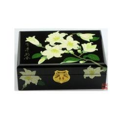 時代物の家具の中国の宝石箱Bx-5