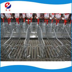 Les caisses de gestation de haute qualité pour les porcs de plume de calage