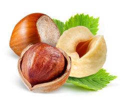 Geschälte gebratene natürliche Haselnuss-grosse wilde organische Nordosthaselnuß des Qualitäts-Großverkauf-159 im Shell blich,/die gebratenen gerösteten Haselnüße/