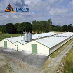 低価格の鶏を耕作する高度の家禽の農機具