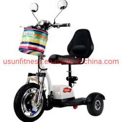 Fiets van de Mobiliteit van de Autoped van drie Wielen de Elektrische voor Volwassene
