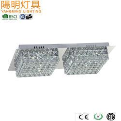 2 LEIDENE van lichten de Muur en het Plafond van het Kristal zetten Lichte LEIDENE 20W 3000K op