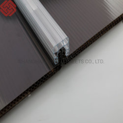 Disque U-feuille de polycarbonate avec des clips de verrouillage pour le commerce de gros de toiture