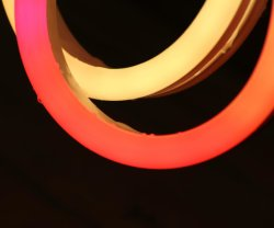 외부 및 내부 장식을 위한 랜덤블 LED 네온 플렉스 LED 스트립 유연한 네온 스트립 라이트 레드 블루 옐로우 그린 웜 화이트 RGB 네온 라이트