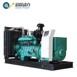 Het Methaan van de Generator van het gas/de Generator van de Macht Biogas/Natural Gas/LPG/Propane/LNG/CNG