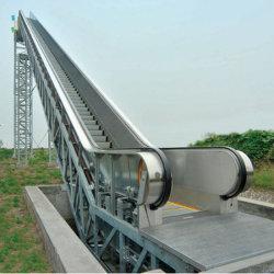 Les transports publics de passagers Escalator