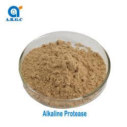 A protease alcalina de qualidade alimentar para a degradação protéica enzimas