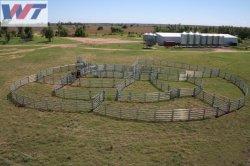Painel de cerca de exploração de aço galvanizado/painéis de gado bovino e portões para venda