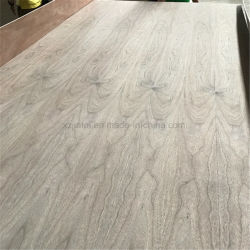 Compensato di legno compensato di noce nero Premium per mobili