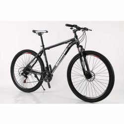 21 Speed 29 inch Double Disc-Brake draagbare mountainbike