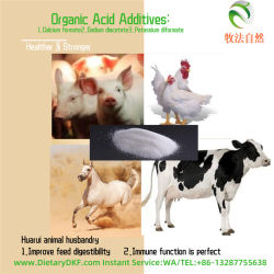 Tiergesundheit-Wachstum-Förderer-KaliumDiformate Lieferanten-KaliumDiformate Zufuhr-Zusatz