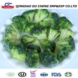 Buen precio mayorista de vegetales orgánicos frescos de brócoli congelado IQF
