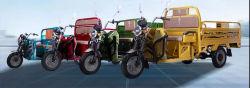 2021 Triciclo elettrico, Cargo elettrico, caricatore elettrico, modello più recente