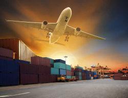 El transporte de logística de Canadá, DDU