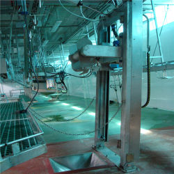De kant en klare Kosjer Schapen Halal die van het Project Apparatuur van het Slachthuis van de Geit van de Lijn de Schapen met het Ontharen van het Lam Machine slachten