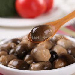 Ingredientes cozidos Sushi Cogumelo Palha comestíveis na jarra de vidro