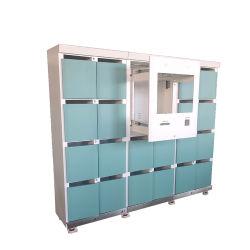 Densen ha personalizzato il Governo chiave espresso intelligente degli armadi del pacchetto dell'armadio astuto automatico sicuro d'acciaio elettronico di consegna
