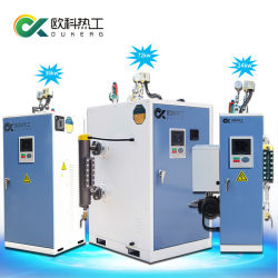 Une grande efficacité de 24 kw 35kw de l'industrie de l'huile de gaz à la verticale d'eau chaude Chaudière Mini moteur électrique à vapeur