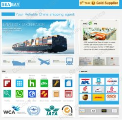 Каботажное судоходство/океан грузовые перевозки из Китая в Мексике, Чили, Бразилии, Аргентины, Панама, Колумбия