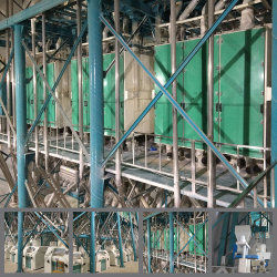 Aufbereiten der Mais-Mais-Weizen-Getreidemühle-Fräsmaschine mit komplettem Gerät