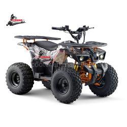 2020 새로운 간행된 전기 ATV 쿼드 중국 공급자