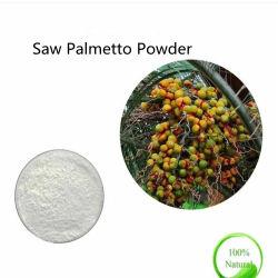 Haut de la qualité naturelle des acides gras de 45 % Saw Palmetto Extrait en poudre