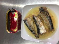 Thon et sardines en conserve dans l'huile végétale fruits de mer en conserve Maquereau dans la sauce tomate