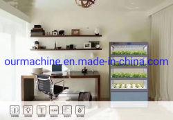 Promoción Vertical de sistemas de cultivo hidropónico de temporada y la decoración de jardín