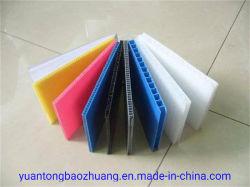 Factory Direct PP Matériau en plastique ondulé Akylux feuilles pour l'étage et la protection de paroi
