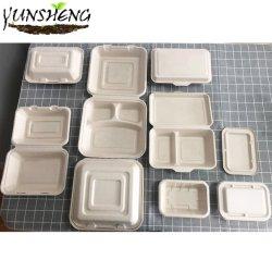 La canne à sucre jetable Microwavable/la paille de blé/Bamboo Firber Pâtes/100 % de la vaisselle compostable