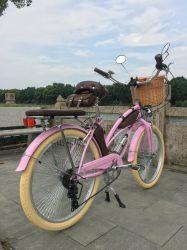 Aok 24台のインチ浜の巡洋艦の自転車のばねのフォークのピンクのバイク