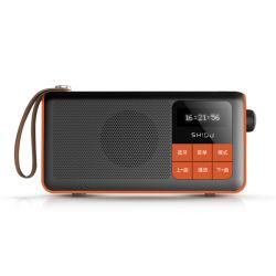 Doppelter Musik Bluetooth MP3-Player des Ableiter-Karten-Kanal-HD mit FM Radio