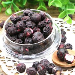 Commerce de gros de haute qualité des produits frais Fruits secs de gel des bleuets en vrac