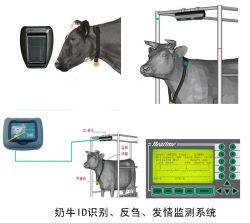 Wiederkäuen-/Hitze-Erfassungssystem (SBFF-JC)