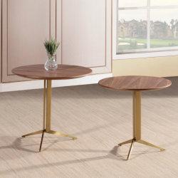 Tavolino da salotto moderno dell'impiallacciatura con le parti superiori di legno e dell'acciaio inossidabile