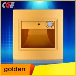 Настенный светильник светодиодный настенный светильник встраиваемый светодиодный лестницы фонари настенные светильники в шаге освещение в помещении Gold с функцией задержки