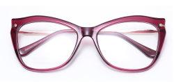 2021 Trendy RT en de Metaal Gecombineerde Frames van de Glazen van het Oog van de Kat van de Bril