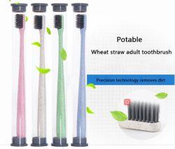 La paja de trigo de carbón de bambú cepillo de dientes suave con largos pelos Nano carbono Binchotan