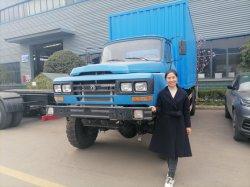 4*4 Dongfeng Cummins Engine 10 toneladas a 12 Ton Van camión de carga de la parrilla
