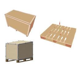 Software di disegno della cassa di legno di Hicas Dnew