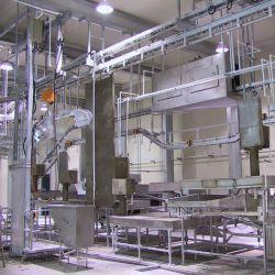 Abattoir Halal la machine pour la ligne d'abattage de bovins pour les bovins abattoir de moutons de tuer la ligne