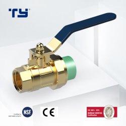 Verde/Branco de Alta Performance PPR/plástico da válvula esférica fêmea de latão com medidor de água