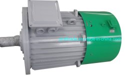 50kwハイドロ力のための低いRpmの高性能の永久マグネット発電機