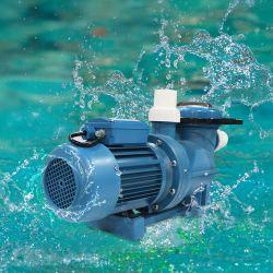 Fabbrica buona qualità piscina sabbia filtro pompa acqua elettrica