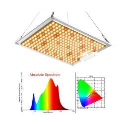 100W de alta calidad óptica Ppfd Rey interior mejor espectro Quantum 120 W W LED Luz crecer malezas regulable de crecimiento de la planta de la planta de luz LED comercial creciente